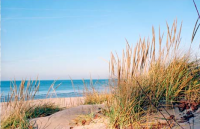In spring, summer and fall, swim and picnic at sugar sand beaches; canoe, kayak or tube on crystal-clear streams; or, simply let the day slip away with a late summer sunset. Wintertime provides a much different view. Snowshoe, cross country or downhill ski, snowboard or venture into the wilderness. Climb the big dune at Sleeping Bear Dunes National Park